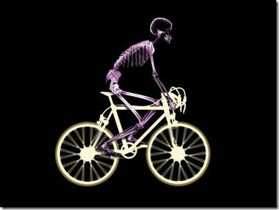 esqueleto bicicleta