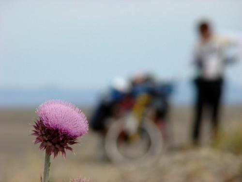 Acredite, tem uma bicicleta ali! Foto de RGG.