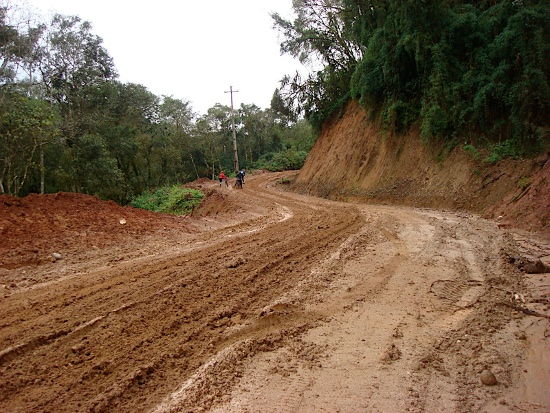 estrada cerne curitiba ponta grossa
